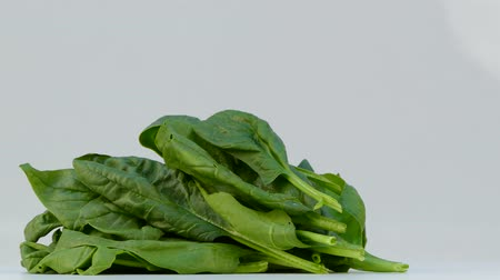 A bunch of spinach leaves spinning on a white background