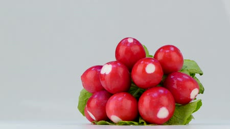Purified radish on white background Stok Video