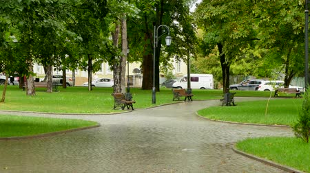 benches : Behind an empty park the cars are in a traffic jam. Stock Footage