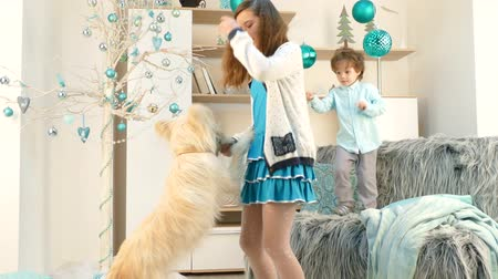 darling : Children make a dog dance. Stock Footage