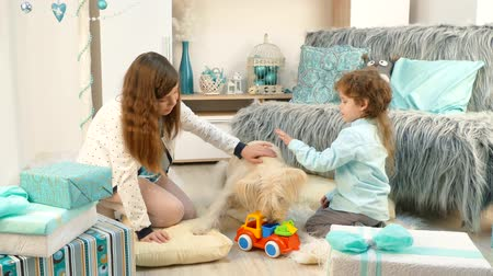 darling : dog playing with children in toys Stock Footage