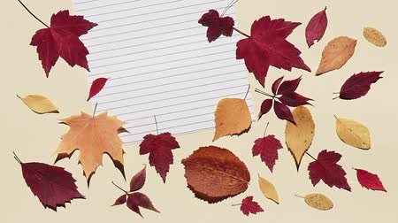 Pencil is rolling on a lined sheet of paper and stopping. Beige background with colorful autumn leaves. Bright sunlight and hard shadows. Concept of back to school
