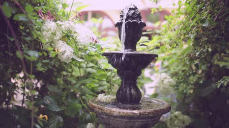díszes : Small backyard fountain in a garden. Beautiful dreamy water geyser with green plants.Beautiful fountain statue in backyard garden.Beautiful decorative home garden stone fountain