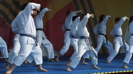 сильный : Moscow, Russia - May 14, 2017: group of children show karate kata on the field of martial arts One in the field is warrior.
