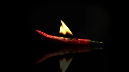 çili : Burning red chili pepper isolated on a black background, on a black mirror surface with reflections. Stok Video