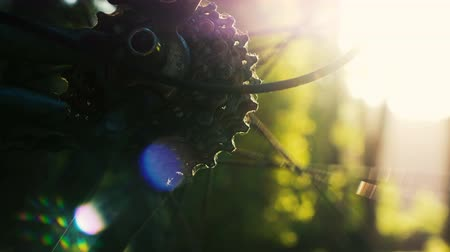 debriyaj : Bicycle wheel rotates on a sunset background