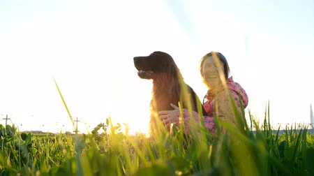 házigazda : Woman hugging the dog at sunset and laughing, young girl with pet sitting on grass and resting in nature