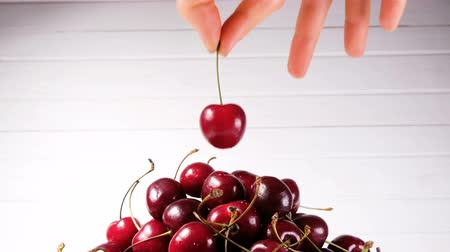 fruity garden : Female hand gently puts one cherry on top of a big pile on a white background close up