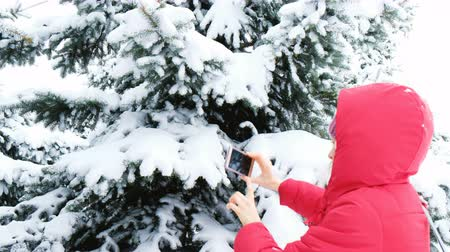 hajtások : Girl tourist taking photos on the phone of snowy trees in the winter forest Stock mozgókép