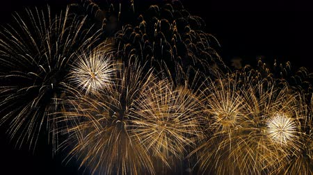 solene : Fireworks in the night sky, colorful explosions of fireworks in honor of the holiday