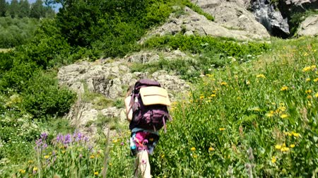 альпинист : Woman hiker climbs uphill in a hiking trip with beautiful scenery. Girl with a backpack on the climb, camera movement