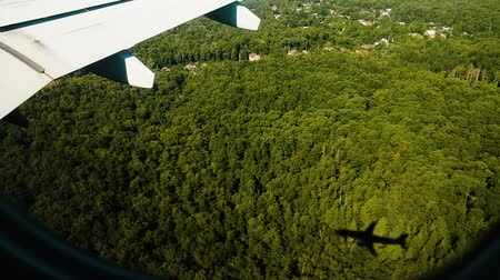 landing field : Airplane shadow and wing from the porthole window flies over the forest on the landing, slow motion.