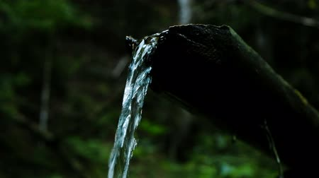 stopping : Forest stream flows through the tree, a source of fresh clean water, slow motion