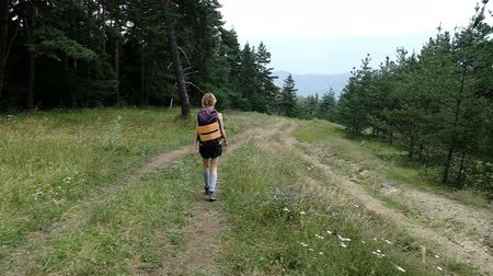 fresh air : Woman tourist with a backpack walks with a backpack in a national park in the forest in the summer, slow motion Stock Footage