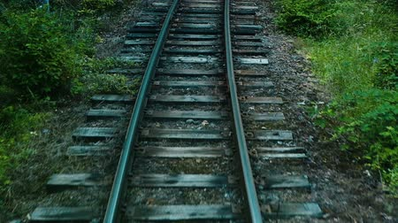 sleepers : Narrow-gauge railway, rails and sleepers in the forest, slow motion