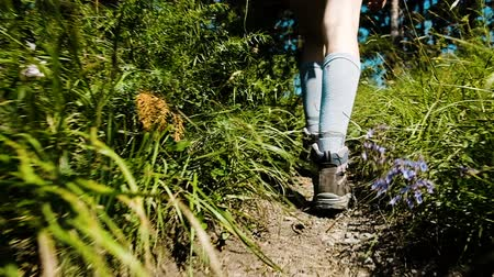 başıboş : Womens legs in trekking boots and golf shoes go up and Idt along the path in the forest between wildflowers in a hike, slow motion, camera movement