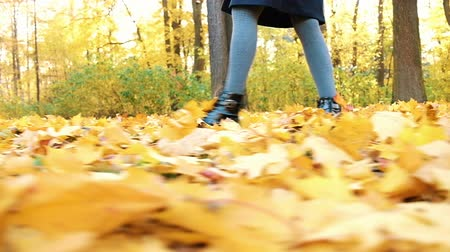 klesá : Womans legs walking on fallen leaves in golden autumn, slow motion, camera movement