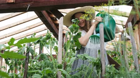 sede : Happy beautiful girl in a straw hat pours water on plants from a watering can in a greenhouse
