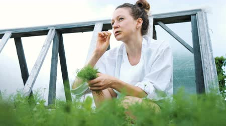 canteiro de flores : Woman picks dill and eats from the garden close-up in the summer garden