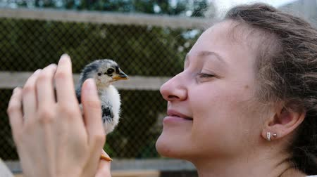 touched : Woman strokes and holds a small chicken in her hands and is moved by a bird in close-up
