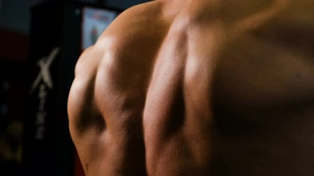 biceps : Strong male back close-up. Bodybuilder performs an exercise on chest muscles Stock Footage