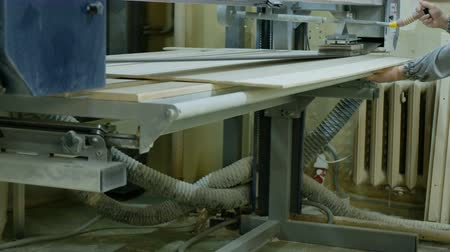 madeira compensada : Worker polishes a sheet of plywood on a belt sander