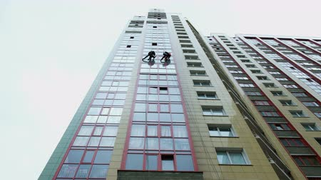 альпинист : Two industrial climbers are washing, cleaning facade of a modern office building