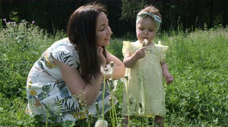 tremendous mother and daughter in summer dressing on meadow