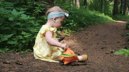 concentrated toddler girl in dress gathers brown pinecones