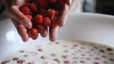 feszült : person hands pour red raspberries into milk in white bowl Stock mozgókép