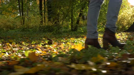 follow shot : woman legs walk on golden leaves at sunlight side low shot Stock Footage
