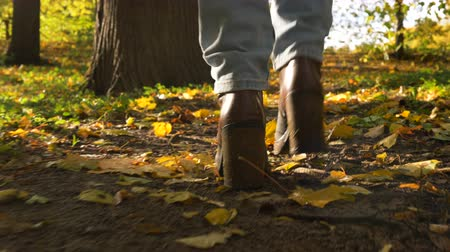 chunky : girl legs walk on golden carpet in sunny forest low arc shot Stock Footage