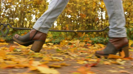 follow shot : woman legs in stylish boots walk on golden leaves side view