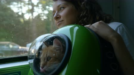 provést : Woman rides a train with a red cat in a backpack with a porthole