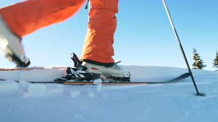 ski boots : skier moves along white unspoiled snow close low angle shot