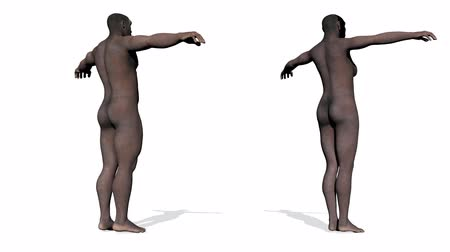 оказывать : Homo erectus male and female - 3D render