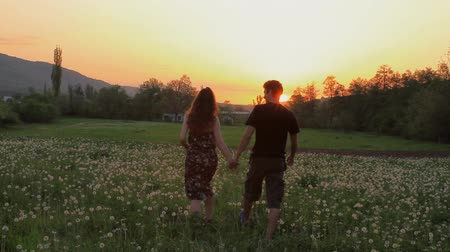 amor : Cute Young Couple Walking through Summer Dandelion Field at Sunset HD