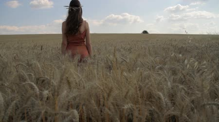 polního : Nature Beauty Young Woman Summer Cloudy Wheat Field Relax Pose Holiday Concept