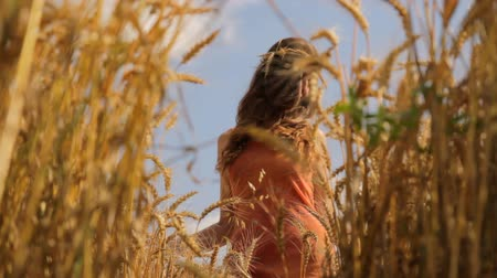 pretty : Beautiful Fashion Model Beauty Dress Walking through Wheat Field Passing by HD Stock Footage
