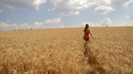 crescimento : Organic Health Living Food Young Woman Caressing Wheat Healthy Concept HD