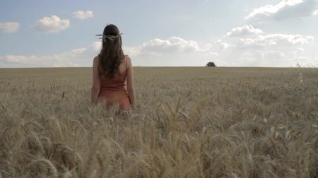 terep : Sun Hope Rising Young Woman Standing in Wheat Field Happiness Concept HD Stock mozgókép