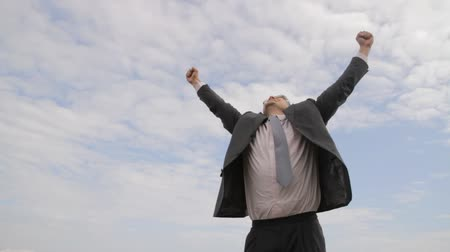 cliff : Businessman Celebrating Success Arms Up Victory Concept Background HD