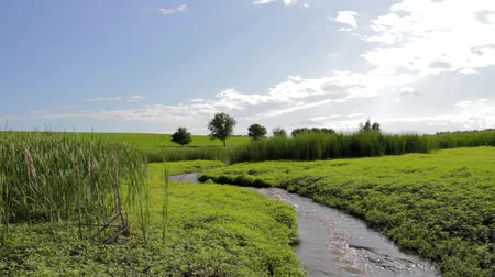 irrigação : River Curving Through Green Spring Field Nature Travel Background HD