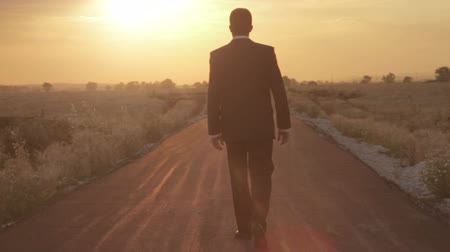 vie : Camminando Road to Success Sole Tramonto di fondo flare HD