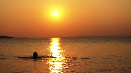 jimnastik : Swimmer at Sunset Background HD Stok Video