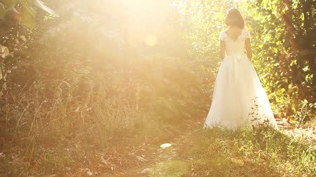 ruha : Pretty Woman White Wedding Dress Nature Sun Forest Background