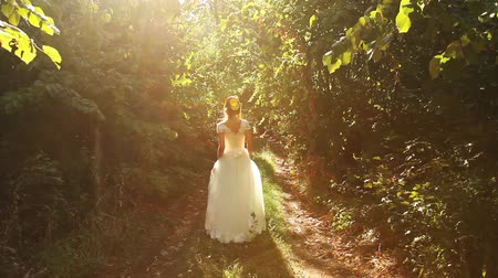 nevěsta : Vintage Bride Dress Woman Forest Nature Beauty Art Background