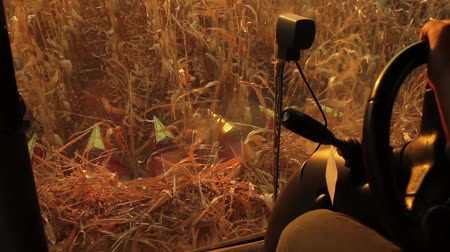 polního : Harvester Cabin Collecting Corn Agriculture Concept HD