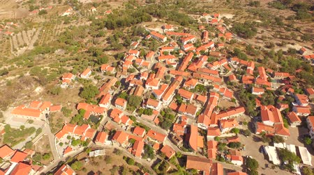 adriyatik : Community Landscape Aerial Historic Drone Travel Portugal City Building Europe Tourism 4K Famous History Architecture Guaita Tower Trees