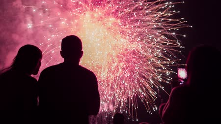 Fireworks Celebration In Front Of Man And Woman Silhouettes Romantic Love Relationship Concept